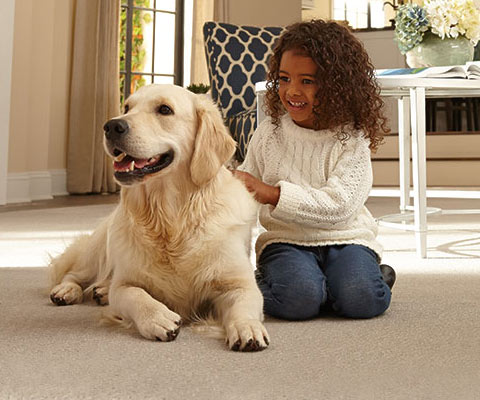 Mohawk Smart Strand Carpet with Animal Protection and Warranty